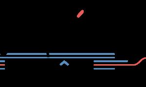 les-toques-des-boites-logo